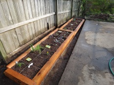Raised beds for narrow spaces.
