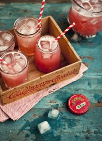 Cranberry Apple Vodka Punch
