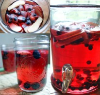 Pinterest In Real Life: Cranberry Apple Vodka Punch